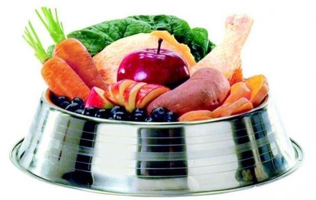 alimento natural para cachorro